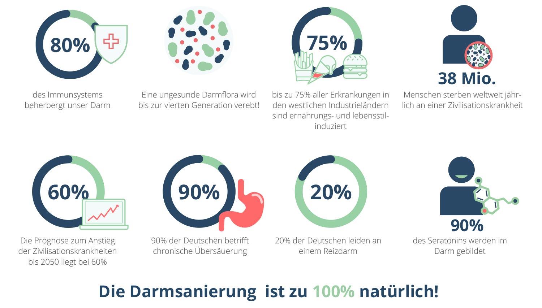 darmsanierungskur infografik
